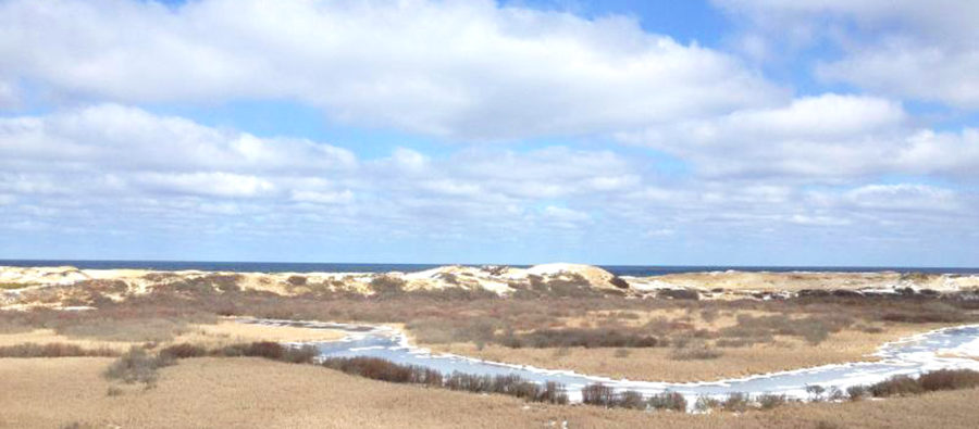 Cape Cod National Seashore by National Park Service crop